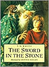 the sword in the stone jacket